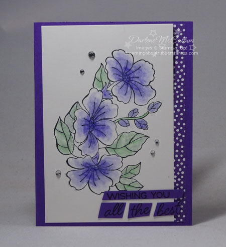 Blended Seasons Spring by Stampin Up
