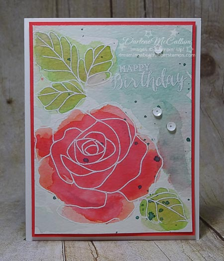 Rose Wonder Bundle Watercolor