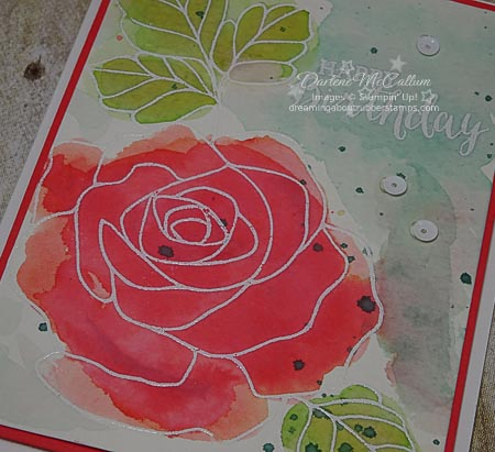 Rose Wonder Stamp Set Card