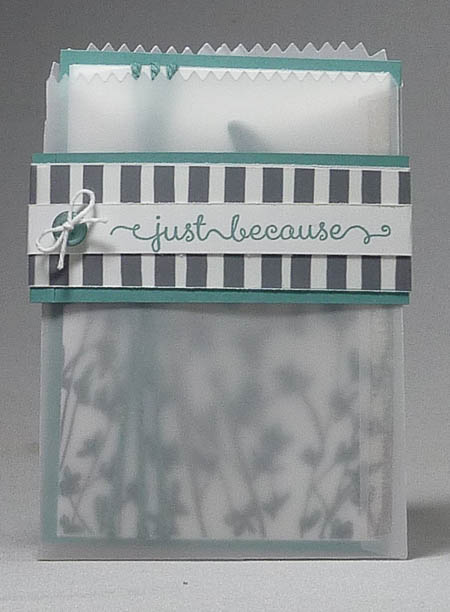 Sheer Perfection Mini Treat Bag and Card Set in Lost Lagoon