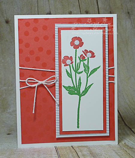 Wild About Flowers and Color Me Irresistible Card